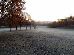 Frosty morning 1 Dec